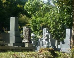 お墓の雑草対策はどうすれば?雑草の種類と効果的な方法