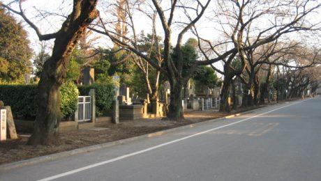 谷中都営霊園